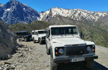Premium Safari Tours