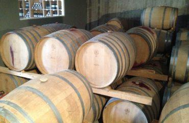 Premium Safari Tour - The Secrets of Cretan Wine and Olive Oil (2)