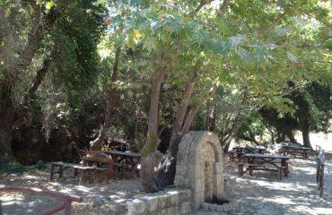Premium Safari Tour - The Secrets of Cretan Wine and Olive Oil (20)