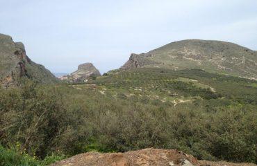 Premium Safari Tour - The Secrets of Cretan Wine and Olive Oil (23)
