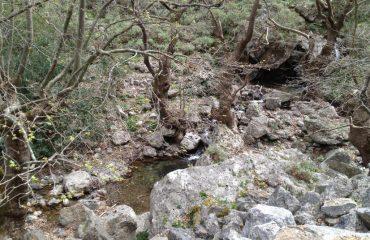 Premium Safari Tour - The Secrets of Cretan Wine and Olive Oil (24)