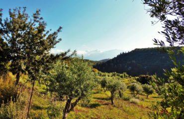 Nature walk of Douliana & Almyrida (1)