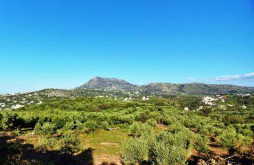 Nature walk of Douliana & Almyrida (4)