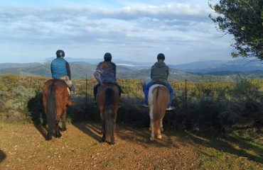 Horse riding tours in Chania